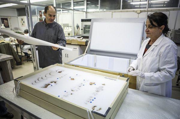 João Zilhão, arqueológo, e Cidália Duarte, antropóloga, ligados ao estudo do esqueleto da Criança do Lapedo desde o começo, fotografados junto aos ossos que estão guardados no Museu Nacional de Arqueologia_Nuno Ferreira Santos